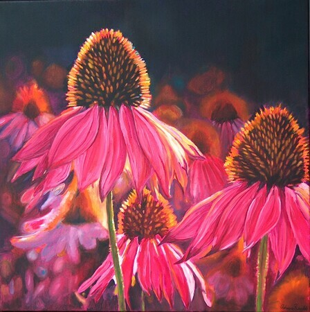 Canadian Cone Flowers, Oil, 24x24, SOLD